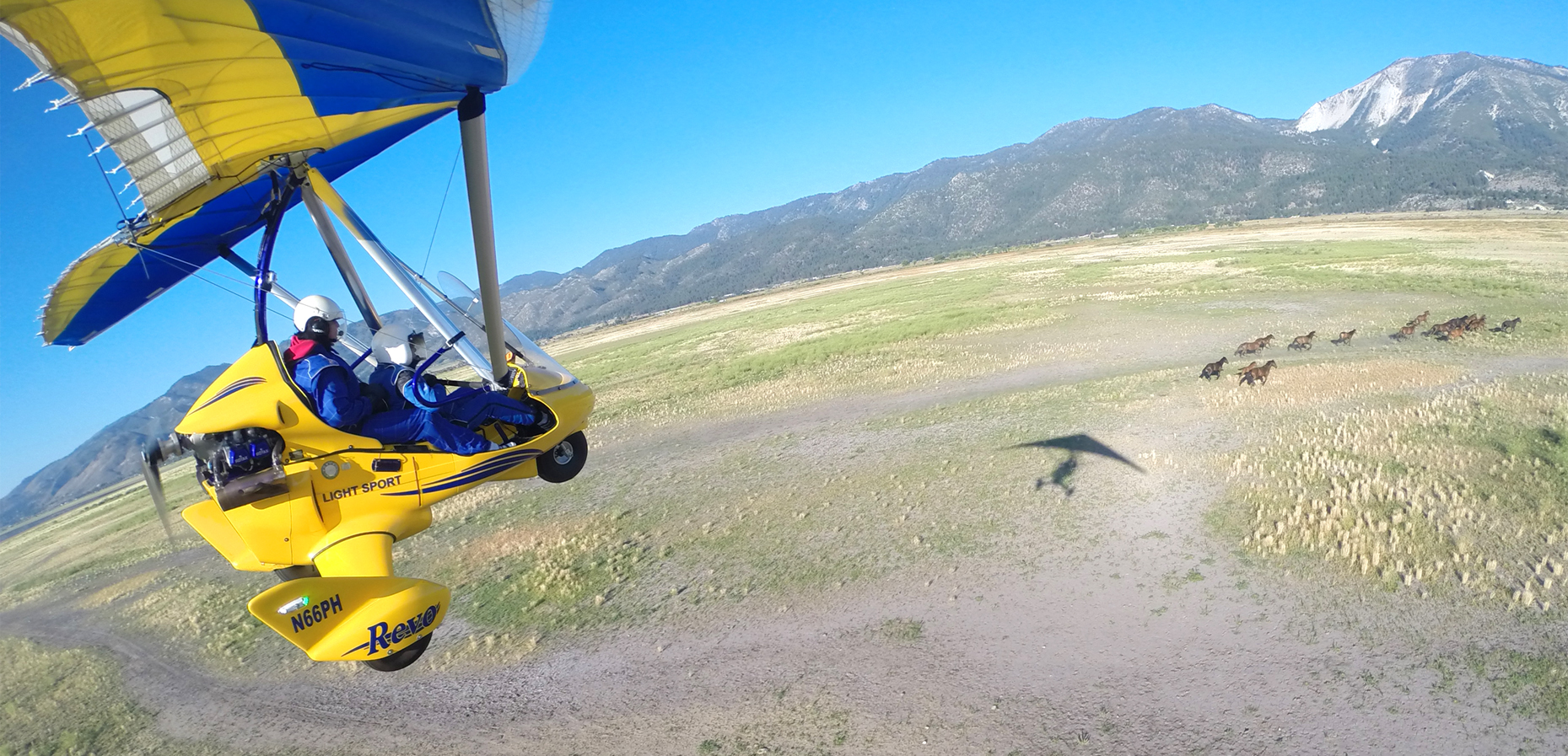 Hang Gliding Tahoe Following Wild Mustang in Nevada Desert